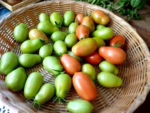 green romas