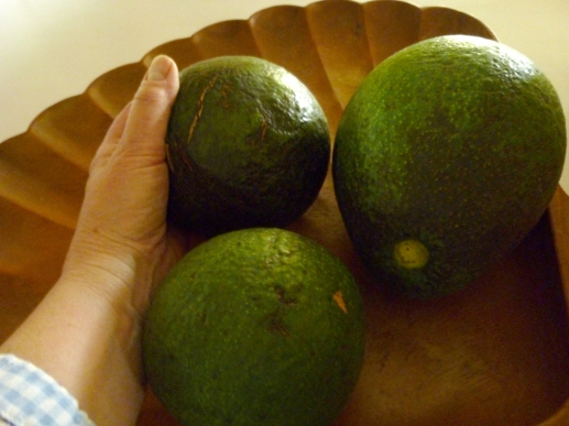 avos and hand