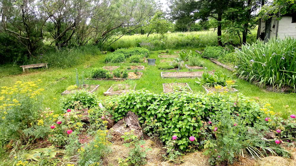 layout of culinary garden 2